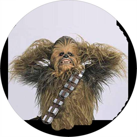 Star Wars Chubaka  005