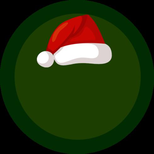 Badge 5fda1f281a3e3